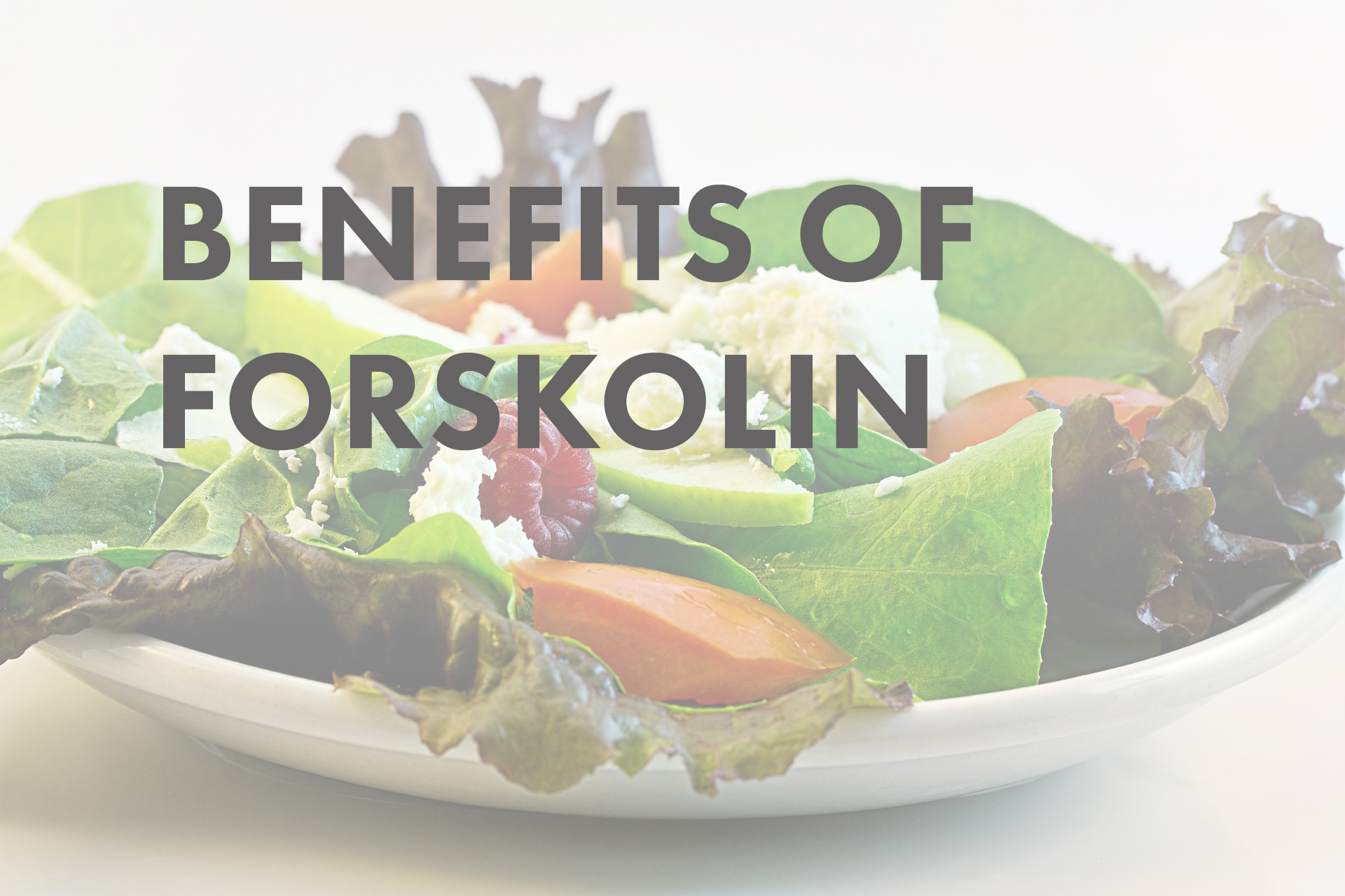 Image of forskolin review for weight loss